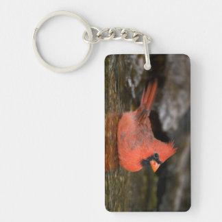 Baño masculino cardinal septentrional llavero rectangular acrílico a doble cara
