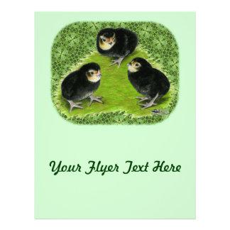 Bantam Chicks in the Garden Flyer