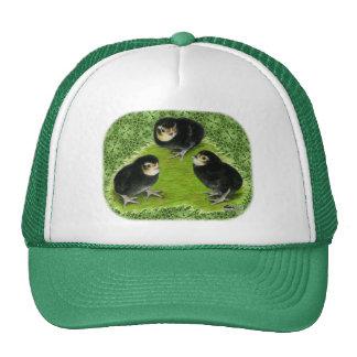 Bantam Chicks in the Garden Trucker Hat