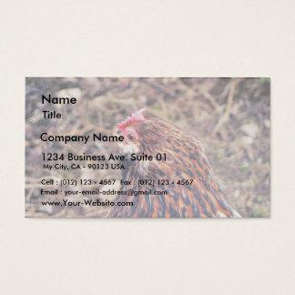 Bantam Hen Business Card