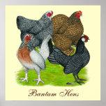 Bantam Hen Quartet, Bantam Hens Print