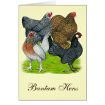 Bantam Hen Quartet Greeting Card