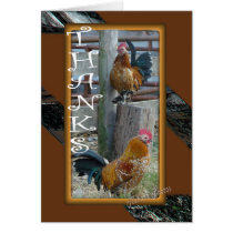 Banty Rooster Brothers TY 4276-z Card