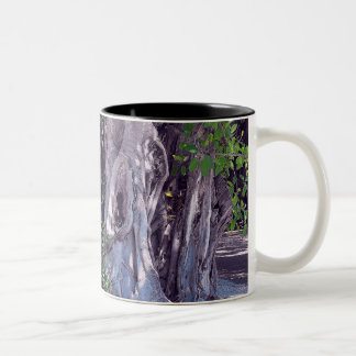 Banyan Street Mug
