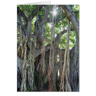 Banyan Tree Card