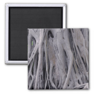 Banyan Tree Trunk 2 Inch Square Magnet