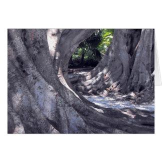 Banyan Trees Card