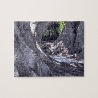 Banyan Trees on Banyan Street Puzzle