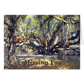 Banyon Tree in Lahaina Maui, Missing You Card