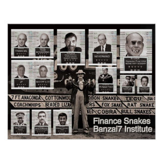 Banzai7 Finance Snakes Poster