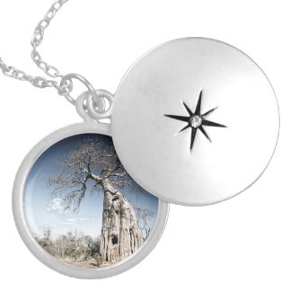 Baobab Tree at Mana Pools National Park, Zimbabwe Locket Necklace