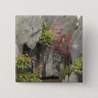 Bao's family garden, Huangshan, China. Pinback Button