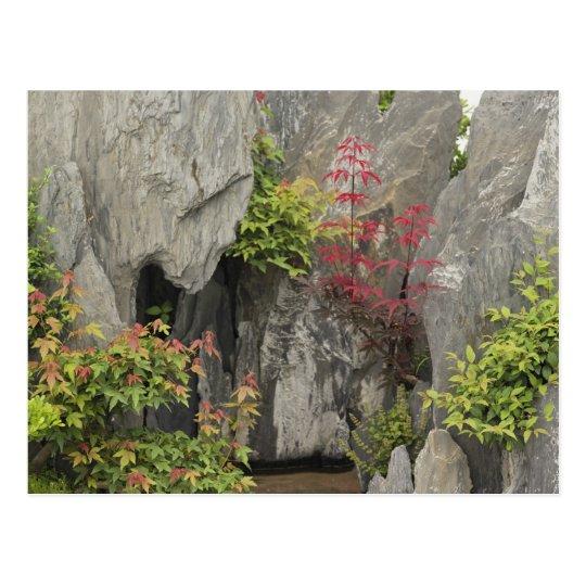 Bao's family garden, Huangshan, China. Postcard