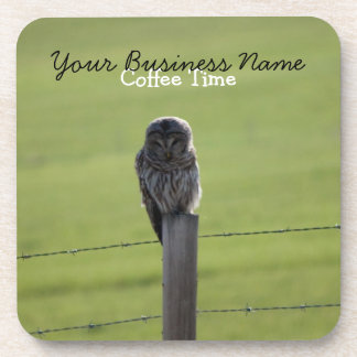 BAOW Barred Owl Coaster