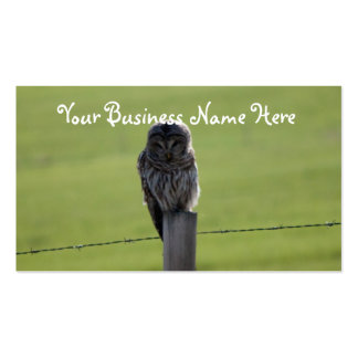 BAOW Barred Owl Double-Sided Standard Business Cards (Pack Of 100)