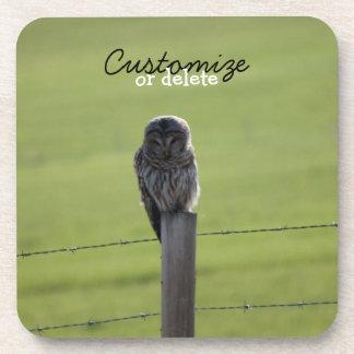 BAOW Barred Owl Drink Coaster
