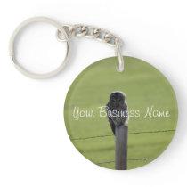 BAOW Barred Owl Keychain