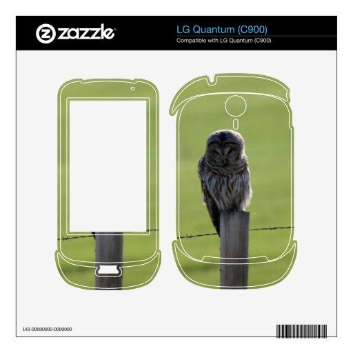 BAOW Barred Owl LG Quantum Skin