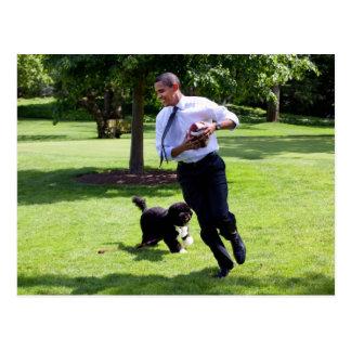 Barack & Bo Obama Postcard