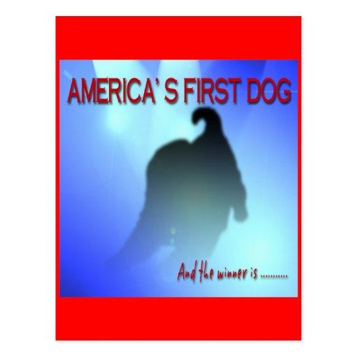 BARACK OBAMA: AMERICA'S FIRST DOG POSTCARD