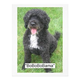 Barack Obama Portuguese Water Dog Flyer