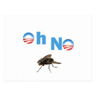 Barack Obama the Fly Killer Postcard