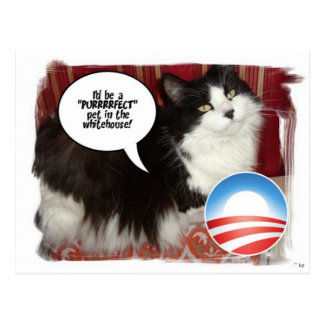 Barack Obama White-House Pet Postcard