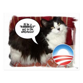 Barack Obama White-House Pet Postcards