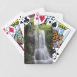 Baraja biodiversidad baraja cartas de poker