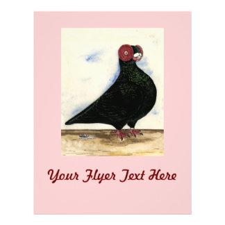 Barb Pigeon Watercolor Flyer