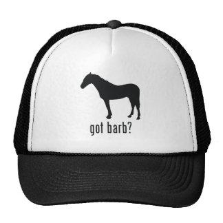 Barb Trucker Hat