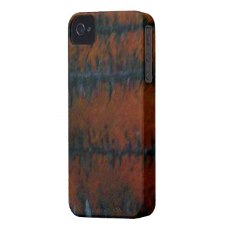 Barb Wire iPhone 4 Case