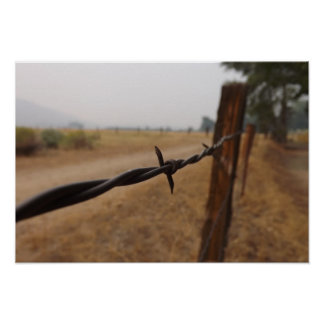 Barb Wire Fence Poster