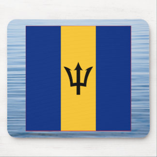 Barbadian Flag Floating on water Mouse Pad