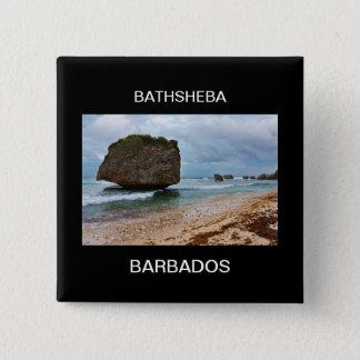 Barbados, Bathsheba Rocks Pinback Button