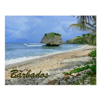 BARBADOS (BEACH/LARGE ROCK) POSTCARD
