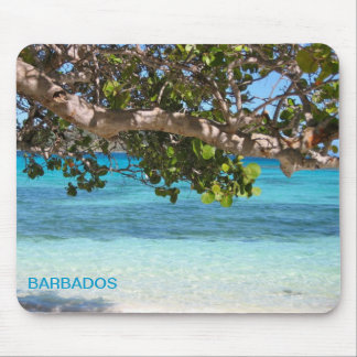 Barbados Beach Scenery Mouse Pad