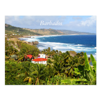 Barbados Postcard, Ocean, tropical trees Postcard