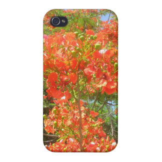 Barbados Pride iPhone 4 Cases