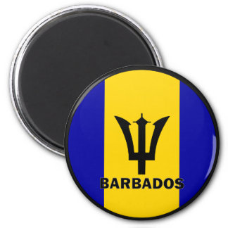 Barbados Roundel quality Flag Fridge Magnet