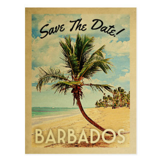 Barbados Save The Date Vintage Beach Palm Tree Postcard