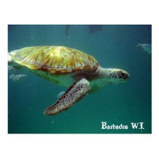 Barbados W.I. Postcards