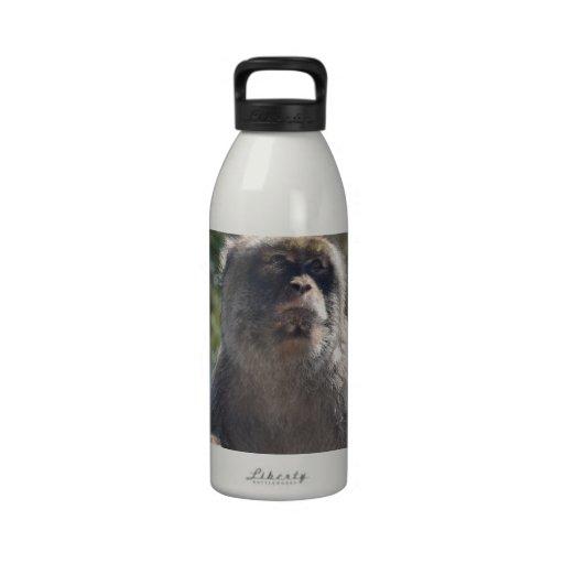 Barbary Ape Drinking Bottles
