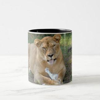 Barbary Lion-008 Two-Tone Coffee Mug
