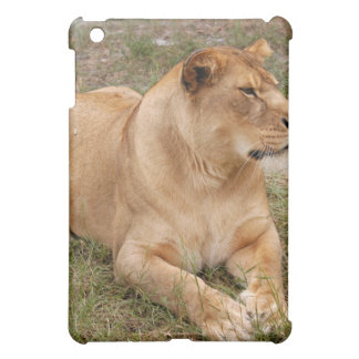 Barbary Lion  Cover For The iPad Mini