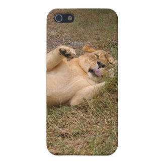 Barbary Lion i iPhone 5 Cover