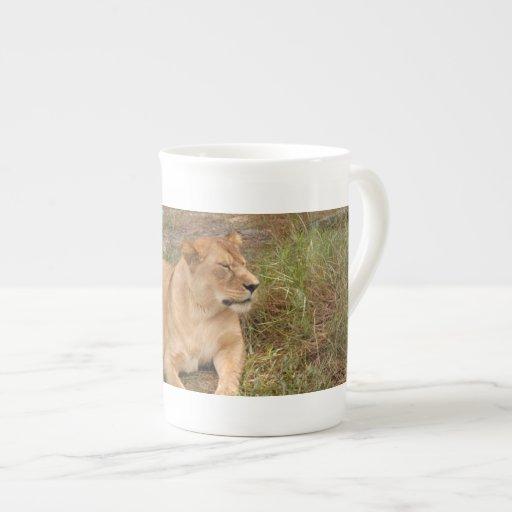 Barbary Lion-nap-008 Tazas De China