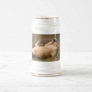 Barbary Lion-nap-013 Beer Stein