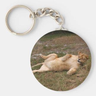 Barbary Lion-nap-016 Llavero Redondo Tipo Pin
