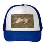 Barbary Lion-nap-016 Trucker Hat